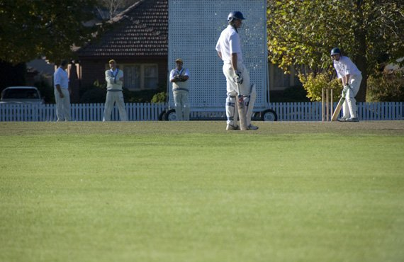 Cricket Match at Bradman Oval